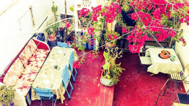 Casa del Cine - patio